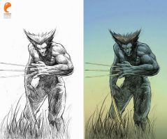Tribute to Wolverine by artupida