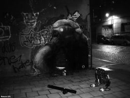 DUSTER132_Brussels_2008 by duster132