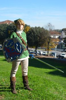 Link - Twilight Princess by Follin