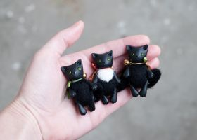black cats by freedragonfly