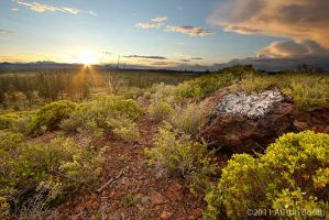Sunset Hill by austinboothphoto