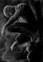 Spider-Man by almorti123
