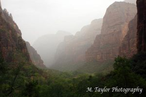 Zion by MTaylorPhotography