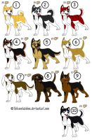 ginga dogs adoptables by wolfhound56200