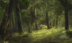 The forest by Dr--Miasma