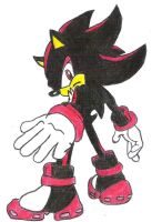 Shadow the hedgehog by Squirtlelover