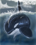 Diving Orca by SyKoticOrKa