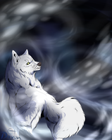 Wolf's Rain - Come with me by Diivon