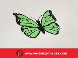 Free Butterfly Vector Art by AlsusArt