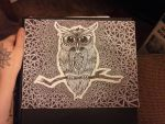 My First Owl by Anj3L