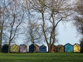 Beach huts in a row by Anita-Sanderson