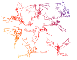 Dragon Flight Sketches by ripple09