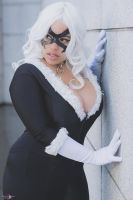 Black Cat Cosplay by Cin'Von Quinzel  by CinVonQuinzel