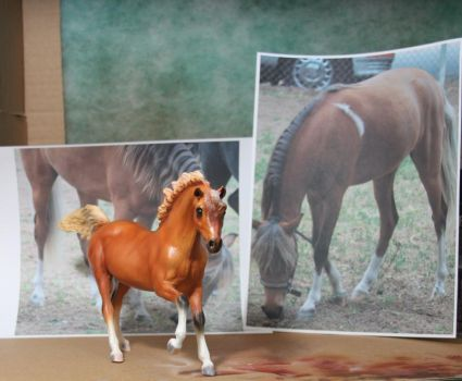 Airbrushed Horse model by StephenCook