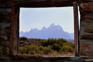 :: Window on the World :: by avogel57photos