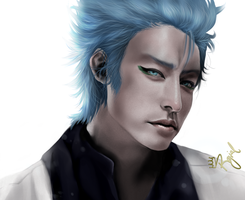 Grimmjow Jeaggerjaques by royial