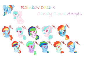 Rainbow Dash x Candy Cloud Adopts by XxTaraTheChibixX