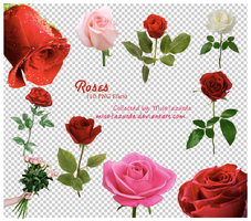 Roses . . 10 PNG Files by miss-lazurde
