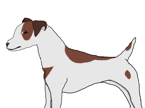 Jack Russell Terrier attempt by QuibbleCur