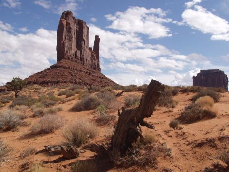 Monument Valley 5 by NB-Photo