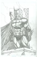 Arkham City Batman by seanforney