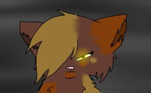 Tawnypelt's serious face by Dawnshade1