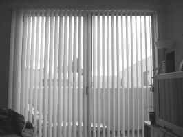 Blinds by xraystyle