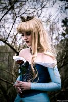 Princess Aurora I by Dessi-Desu