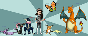 My Pokemon Team by fffe443455