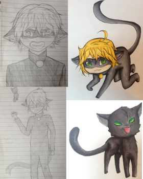 Traditional Chat Noir dump! by ShadeRei