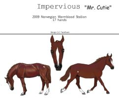 Impervious ~ Reference Sheet by chihuahua4446