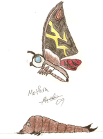 Mothra by SuperSaiyan4Godzilla