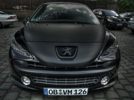 HDRR Peugeot 207 - 3 by Rayce185