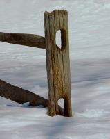 Fence in Snow by raverqueenage