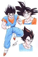 Vegetto 1 by hirokada