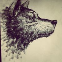Carbon Wolf. by soas95