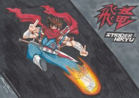 Strider Hiryu by punkbot08