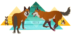 Reese Ref 2013 by kleeblatts