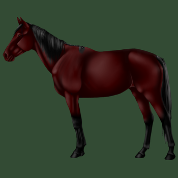 Auranae's Proud Stallion by SoulCrystal214