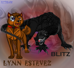 BoltyRandom REQUEST-LYNN AND BLITZ (DARK GUARDIAN) by KITRAM