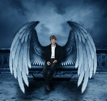 Fallen Angel - Benedict Cumberbatch by zeezeeazc123