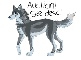 Wolf Design Point Auction (Closed) by Krissi2197