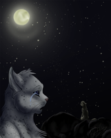 Staring into StarClan by pyroblaker