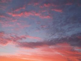 Orange and Pink Sky 1 by chelsmith18
