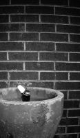 Drinking Fountain 02 by TwistedLabel