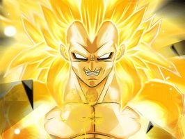 Vegeta Full Super Saiyan by Broly1337