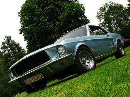 -.blue mustang.- by AmericanMuscle
