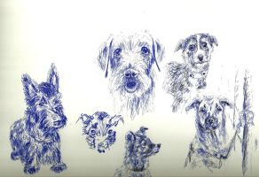 Dogs Pen Sketching Practice by KathiawariLover