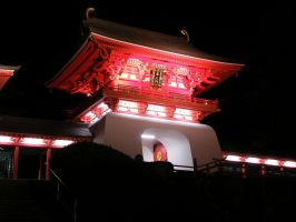 Akama Jingu,Night2 by kaz0885