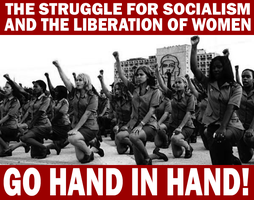 Women's Liberation and Socialism by Party9999999
